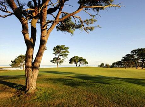 Golfkonferens med Gotländska Möten